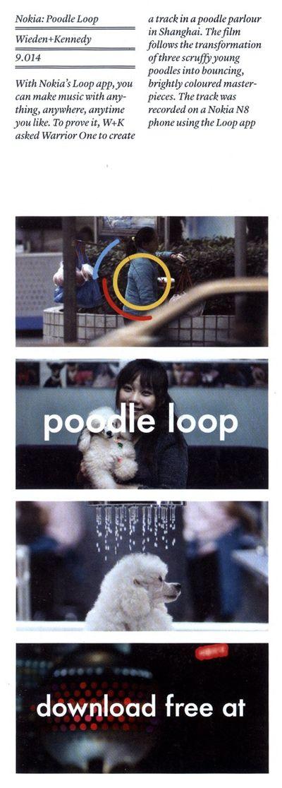 CR 2011 Nokia Poodle