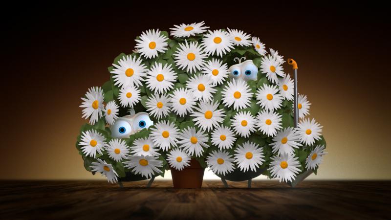 OrangeRomania_Flowers_Still