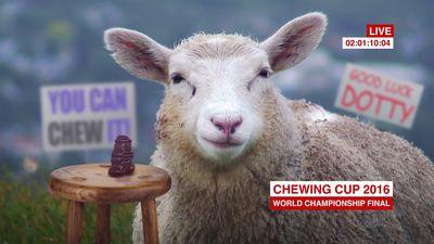 A Chewy Intermission - Sheep 1